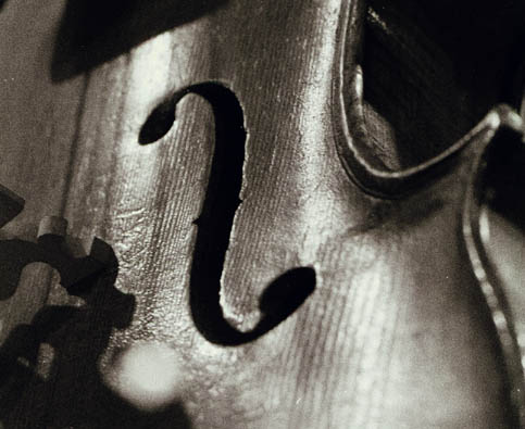 Guarneri varnish texture