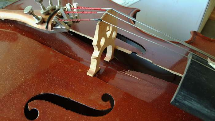 1/8-size Cello Accident